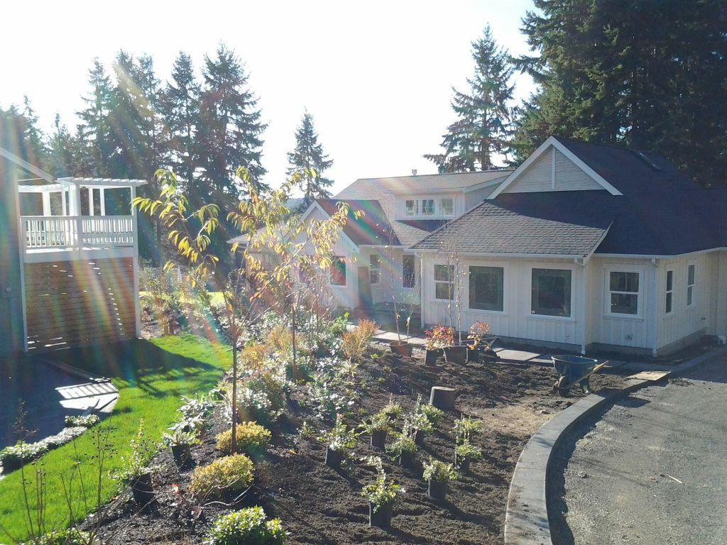 Landscaping Maple Valley
