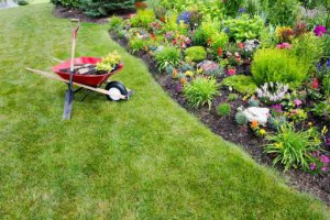 Buy Flowers in Maple Valley, WA - Flower Bed Design experts